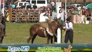 Download Jineteada: Fiesta Provincial del Caballo en Bragado primera parte Video
