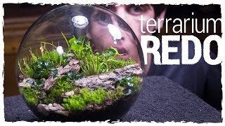 Download No Opening Terrarium Redo! Video