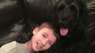 Download Disabled boy kicked off flight when service dog is 'too big' Video