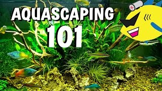 Download NEW AQUASCAPE!!! What Do You Think? Video