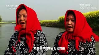 "Download 20171022 地理中国 水上""浮""田 Video"