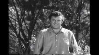 Download The Pawnbroker (1964) Trailer Video