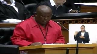 Download Julius Malema shakes up Parliament Video