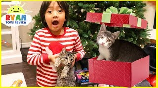 Download Surprise Ryan with Two Cats for Christmas! Video