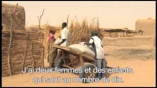 Download Niger et Mali : la crise alimentaire frappe population résidente et réfugiés Video