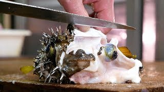 Download Japanese Street Food - PUFFERFISH Puffer Fish Okinawa Seafood Japan Video