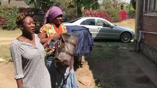 Download Mutare yatsikwa ne Province. Video
