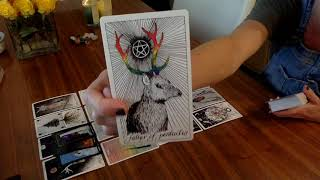 Download DM is releasing karmic and DF is ready for her Emperor! TWIN FLAME COLLECTIVE READING Video
