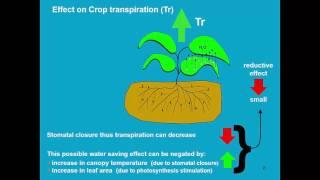 Download Climate change AquaCrop - Training module Nr. 6.4, April 2016 Video