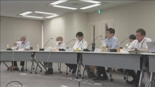 Download 第4回原子炉安全専門審査会原子炉火山部会会合(平成30年08月10日) Video