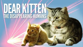 Download Dear Kitten: The Disappearing Humans – Purina® Friskies Video