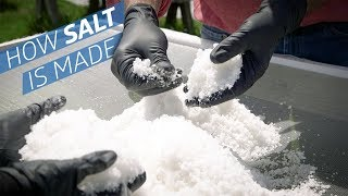 Download Where Does Salt Come From? —How to Make It Video