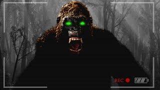 Download FINDING BIGFOOT & MISSING PEOPLE!! (Finding Bigfoot Game) Video