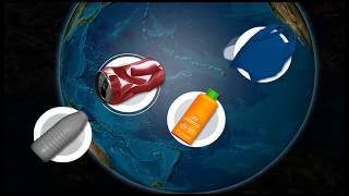 Download Le continent de plastique, ou ″8ème continent″ I AFP Animé Video