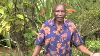 Download Ogosira gwa Joyce Monyoncho Video