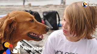Download Surfing Dog Reunites With Boy That He Helped Years Ago | The Dodo Reunited Video