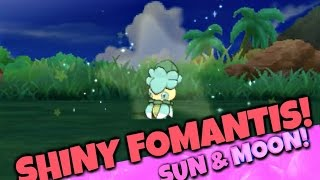Download [LIVE] EPIC SHINY FOMANTIS! SHINY HUNTING POKEMON SUN AND MOON   SUN AND MOON SHINY! SOS METHOD Video