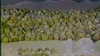 Download Sesame Street - 12 rocks in the desert Video