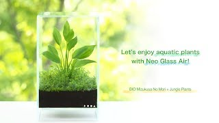 Download [ADAview] Let's enjoy aquatic plants with Neo Glass Air! Video