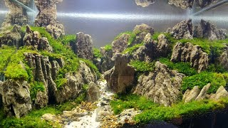 Download #39 Aquascape batu pasir Video