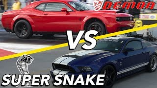 Download Demon vs Super Snake | AN ARGUMENT BREAKS OUT?! Video