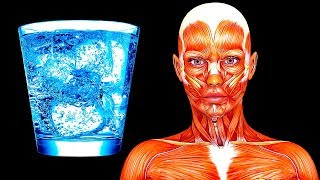 Download I Drank Only Water for 20 Days, See What Happened to My Body Video