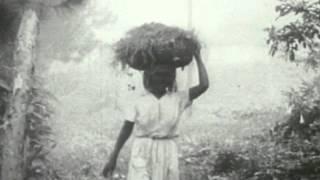 Download Divine Horsemen - The Living Gods of Haiti Video