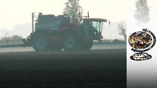Download Glyphosate: Monsanto's Latest Scandal Video