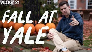 Download Making the Most of Fall at Yale Video