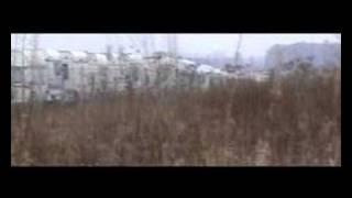 Download Sparklehorse - Sad & Beautiful world Video