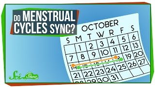 Download Do Menstrual Cycles Really Sync Up? Video