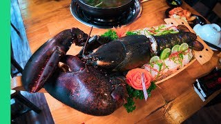 Download 7 POUND LOBSTER FEAST! (Lobster Tail Sashimi + Lobster Blood Soup???) Video