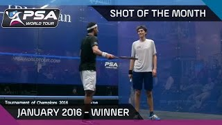 Download Squash: Shot of the Month - Jan '16: Cameron Pilley Outrageous Slam Video