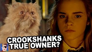 Download Harry Potter Theory: Who Was Crookshanks Original Owner? Video