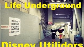 Download Life Underground at Magic Kingdom- The Utilidors- Ep 8 Confessions of a Theme Park Worker Video
