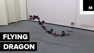 Download This Shapeshifting ″Dragon″ Can Navigate Through Small Openings Video
