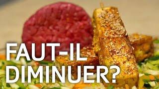 Download Nous mangeons trop de viande! Mais quelles sont les alternatives ? ABE-RTS Video