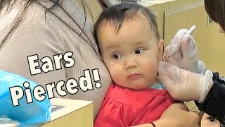 Download Twins get their Ears Pierced! - Dancember 04, 2014 - itsJudysLife Daily Vlog Video