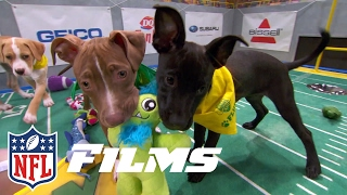 Download Behind the Scenes of the Puppy Bowl | NFL Films Presents Video