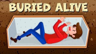 Download What Happens If You Are Buried Alive? Video