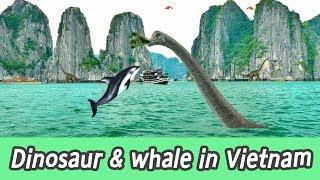 Download [EN] #83 Dinosaur chase Whales in Vietnam, kids education, learn whales name, CollectaㅣCoCosToy Video