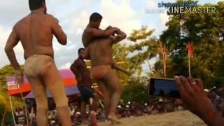 Download कुश्ती में एक ही झटका में चित कर ...... Video