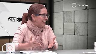 Download Metano ¿un atajo para frenar el Cambio Climático? Simbiosis MX Video