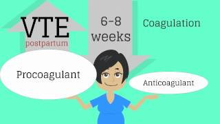 Download Topic 13: Postpartum Care Video