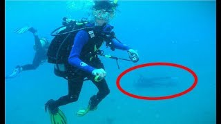 Download Terrifying and CREEPY Diving Stories Video