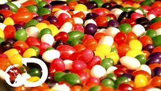 Download Jelly Beans | How It's Made Video