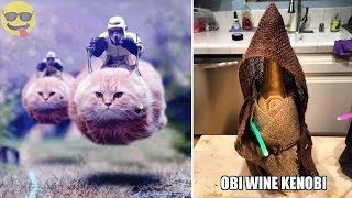 Download Things Only Star Wars Fans Will Find Funny Video