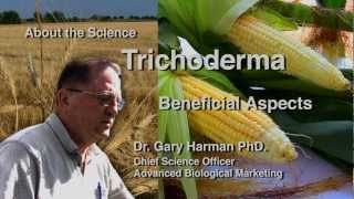 Download Dr. Gary Harman: Beneficial Aspects of Trichoderma Video