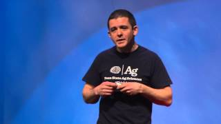 Download PlantVillage: using smartphones and smart crowds for food security | David Hughes | TEDxPSU Video