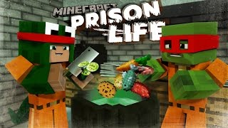 Download Minecraft Prison Life - CAN LITTLE KELLY SAVE US!? #4 w/ Little Lizard & Tiny Turtle Video